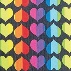 Rainbow Heart from Lillian Vernon