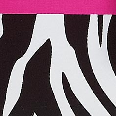 Zebra Print from Lillian Vernon